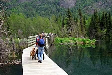 Albert Loop Trail
