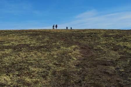 Bear Point Trail
