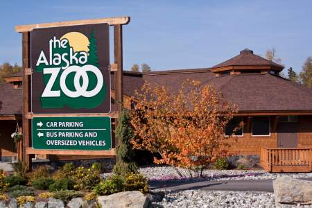 Alaska Zoo