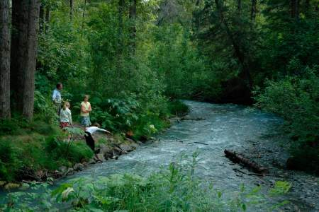 Mount Alyeska Hiking Trails: Hiking For All Fitness Levels