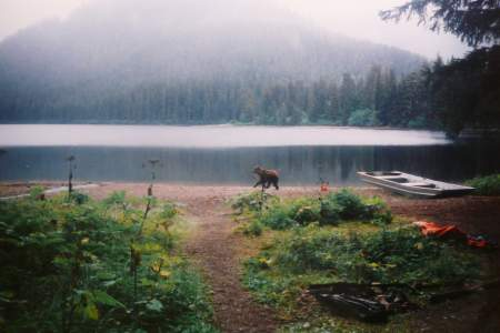 Kook Lake Trail
