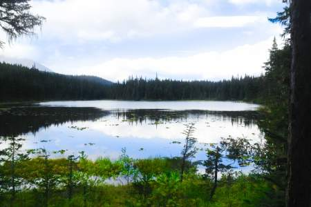 Meridian and Grayling Lakes