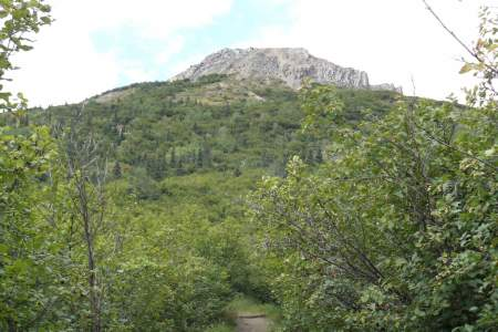 Mount Healy Overlook Trail (Mile .75)