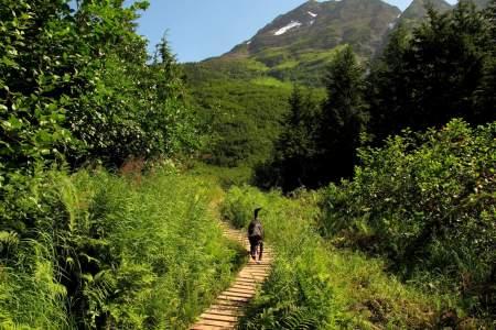 Alyeska North Face Trail