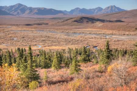 First Denali (McKinley) View In Denali Park