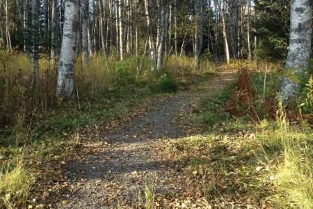 Ray Clapp Trail