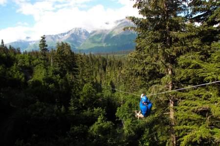 Stoney Creek Canopy Adventures
