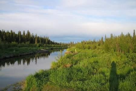 Swanson River Canoe Route