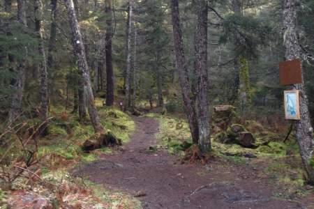 Troop Lake Trail