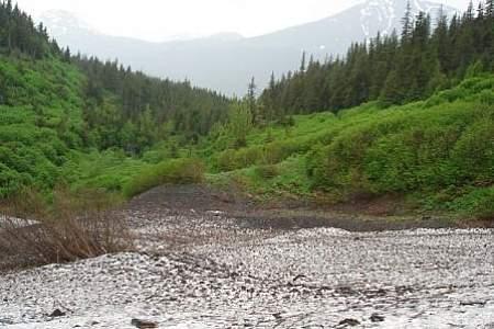 Victor Creek