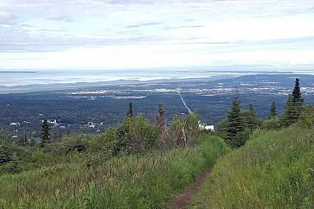 White Spruce Trail