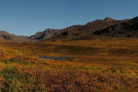 Craigie Creek Trail
