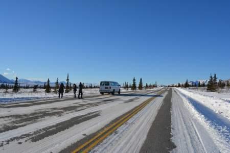 Denali Winter & Spring Drive Adventure