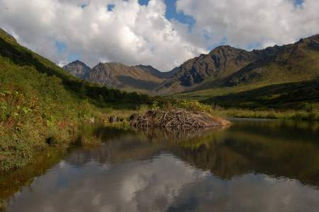 Gold Mint Trail Hike & Backpack