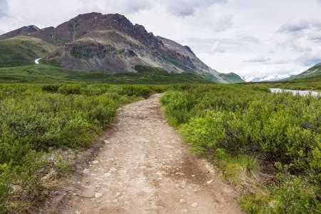 Landmark Gap Trail North MP 24.6