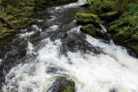 Lunch Creek Trail
