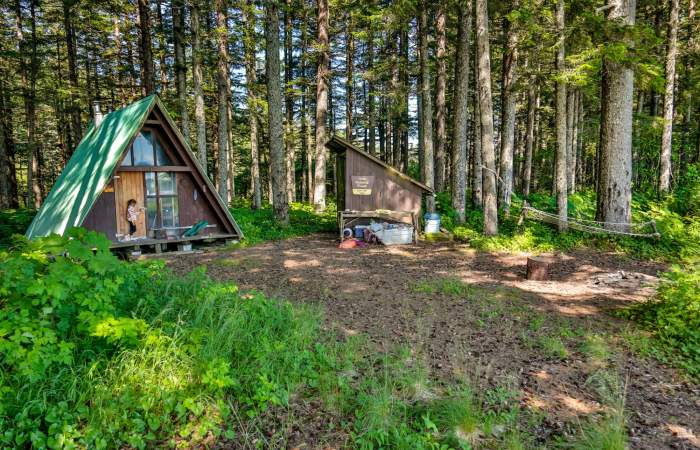 Hook point cabin and woodshed 16 a6633 nrs0pw