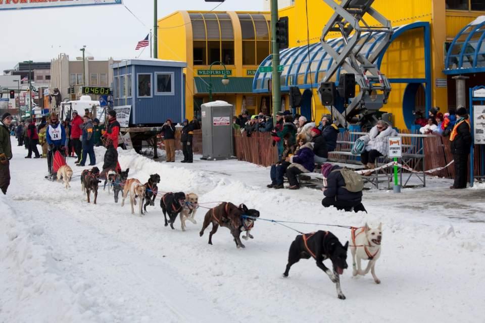 Anchorage Fur Rendezvous Festival & Iditarod