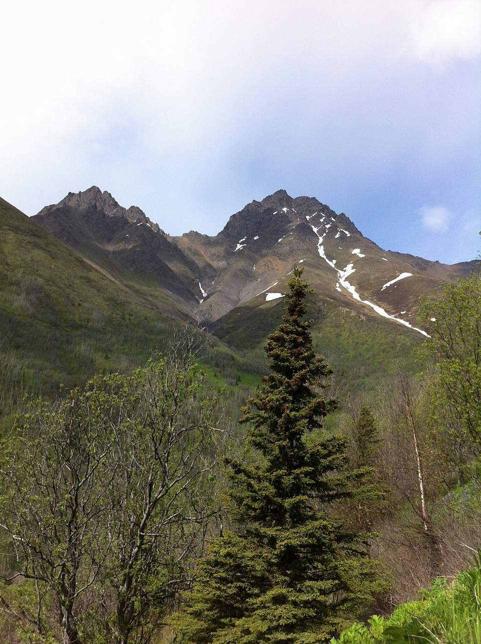 Twin-Peaks-Trail IMG_0431-ov8xcb