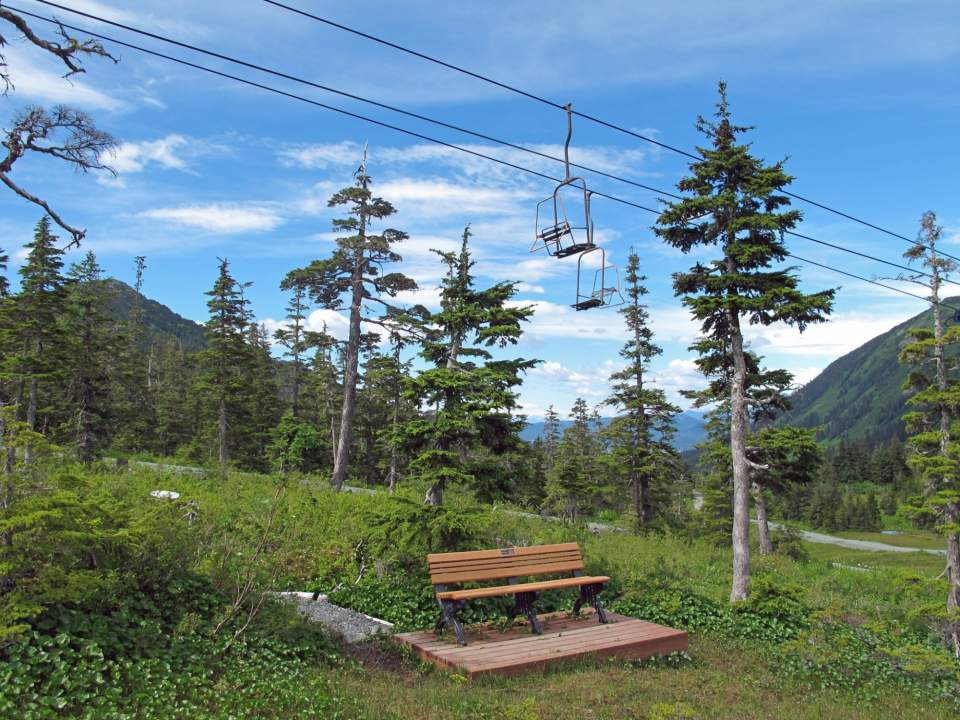 Summer brings its own fun: hike the trails, ride the downhill mountain bike trail, or pick blueberries.