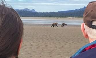 Alaska Air Service Bears Lake Clark IMG 3774