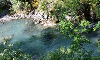 Girdwood Fish in Bird alaska atv adventures