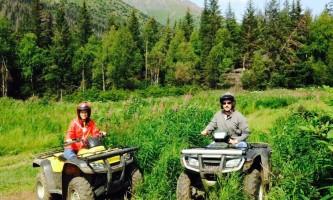 Girdwood Alpine Meadow alaska atv adventures