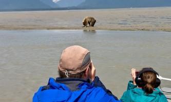 Alaska bear adventures IMG 8443