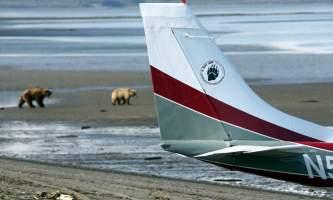 Alaska Bear Adventures with K Bay IMG 4559 22019