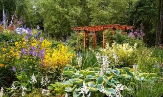 2021 Alaska Botanical Garden needs sorting summer 078