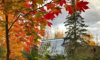 2021 Alaska Botanical Garden IMG 3414