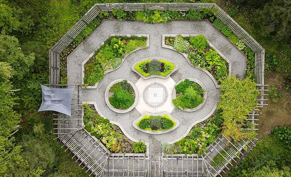 Aerial view of the herb garden