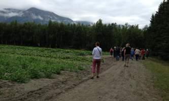 Alaska farm tours 2016 alaska farm tours corner2019