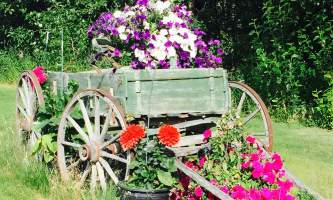 Alaska farm tours Flower Cart Kenleys2019