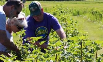 Alaska farm tours IMG 13942019