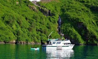 Alaska fjord charters IMG 8949