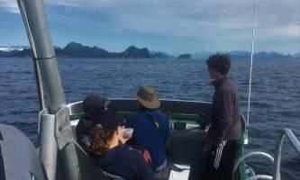 Alaska fjord charters IMG 0378