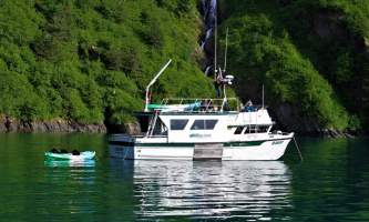 Alaska fjord charters IMG 8948