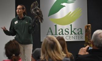 Alaska raptor center Kelsey with great horned owl in auditorium 2017