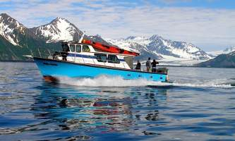 Alaska saltwater lodging steller sunrise bear glacier alaska saltwater lodging