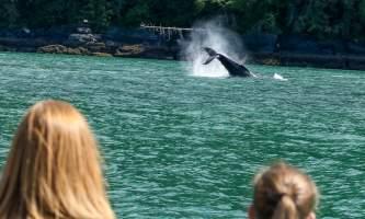 Alaska Tales Whale Watching Brian 1 E4 A0777
