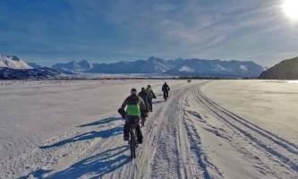 Alaska trail guides Knik Valley