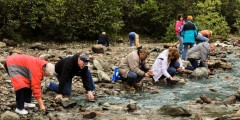 Historic Gold Mining & Panning Adventure