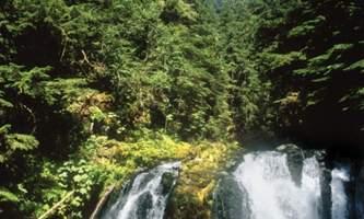 Historic gold mining panning adventure juneau gold 1 Alaska Travel Adventures