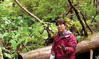 Rain forest canoe adventures Rain Forest Canoe 3