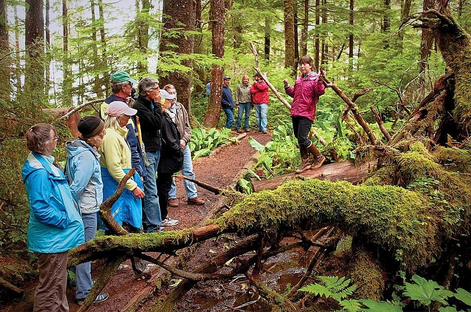 After your paddle, take a guided walk through an incredible old-growth rainforest