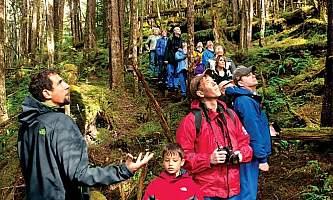 Rainforest island adventure Cruise Rainforest 4