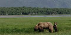 Alaska Ultimate Safaris Adventure Lodge