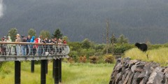 Alaska Wildlife Conservation Center AWCC 43202019