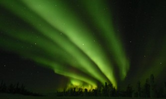 Alaska Wildlife Guide Chena Hot Springs Northern Lights tours 20190301 091710070 i OS2019